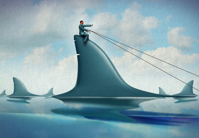Riding on a Shark